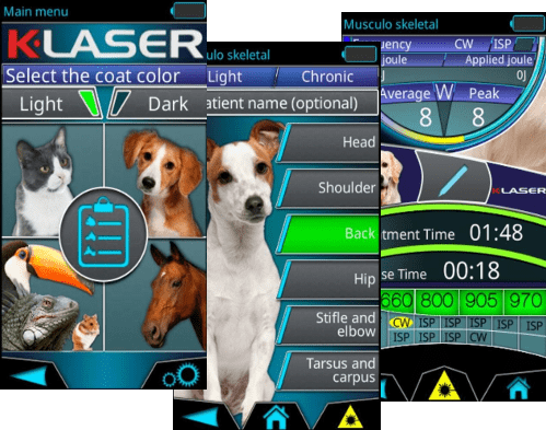 K-Laser-VET-Interface500-min